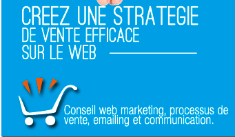 Formation marketing internet