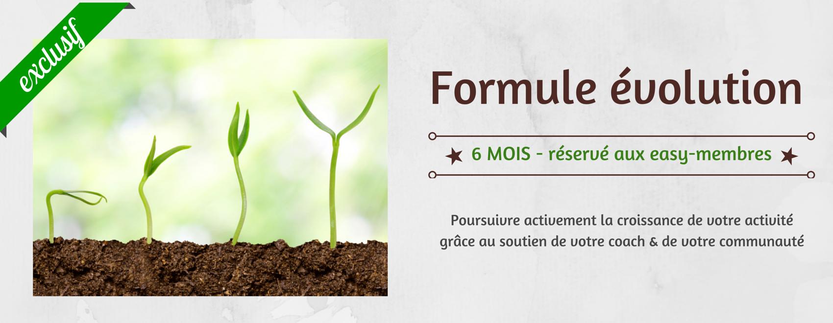 formation webmarketing evolution